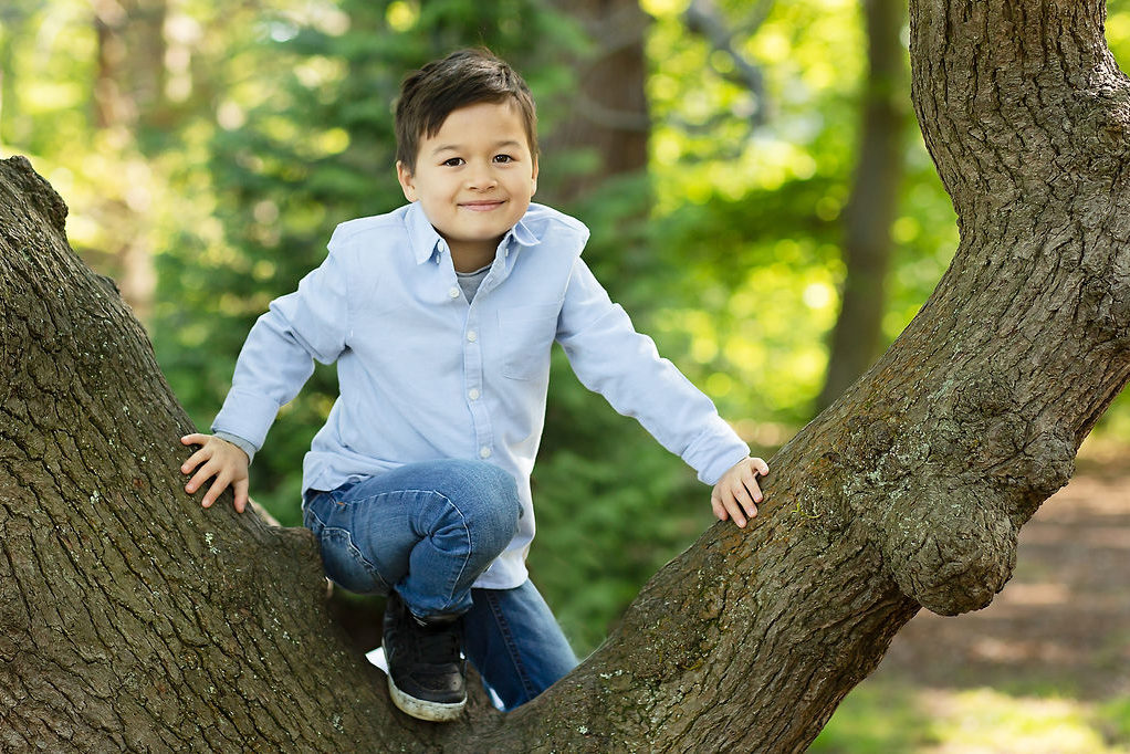 Family photoshoot outdoor. Photographer Cheryl Catton. Making memories. Outdoor child portrait climbing a tree