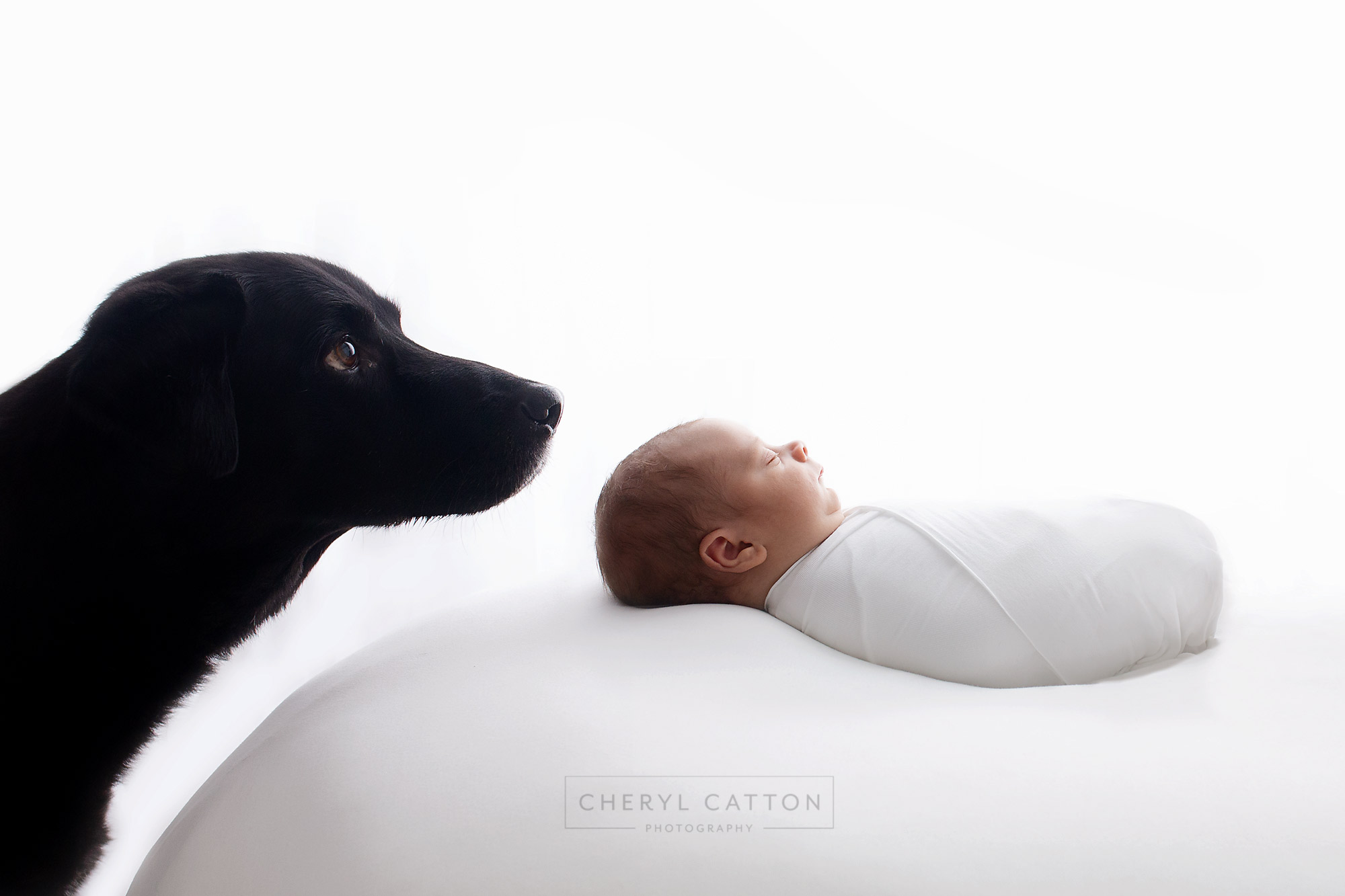 Newborn baby photography photo shoot. Yawning baby. Photographer of photo shoot is Cheryl Catton , Woking., Guildford baby photographer, Weybridge baby photographer, Newborn and dog photography
